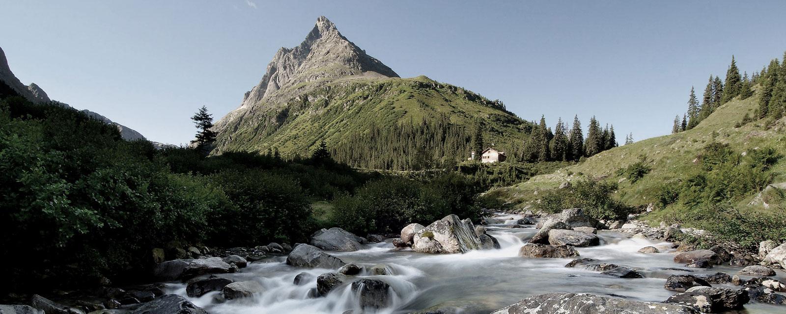 Blick auf einen grün bewachsenen Berg